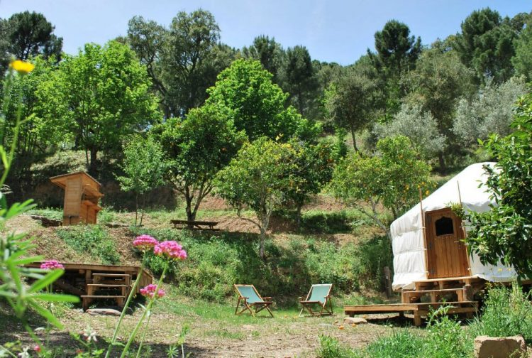 Cloud House Farm Yurt Estepona
